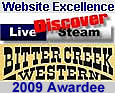 DLS/BCWRR Web Excellence Award 2009
